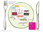 Специфическая углеводная диета, или как разорвать порочный круг нарушенного всасывания