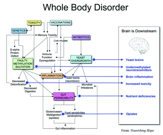 whole-body-diagram